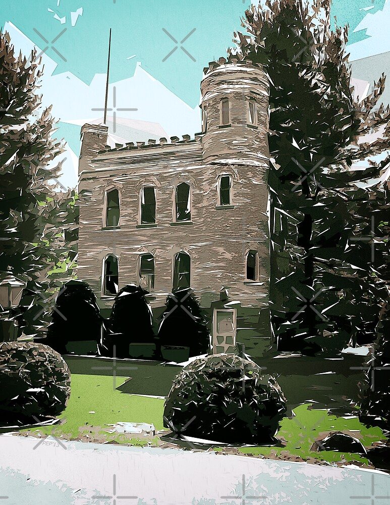 Castle In The Pines by Phil Perkins