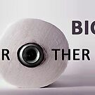 Big Brother is watching you... eveywhere! by Christophe Claudel