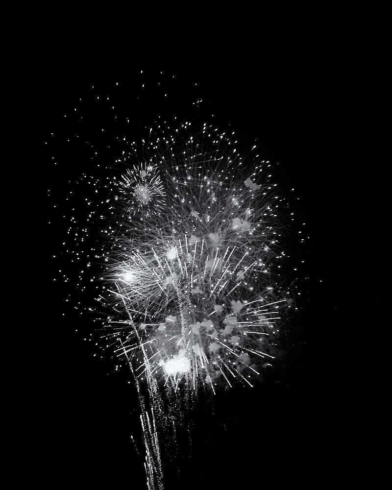 Fireworks On The 4th by stephenevans