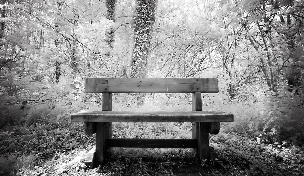 Waiting Bench. by igotmeacanon