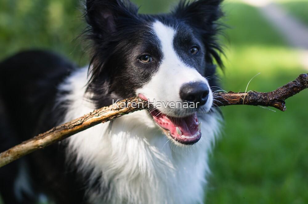 I have stick by Karen Havenaar