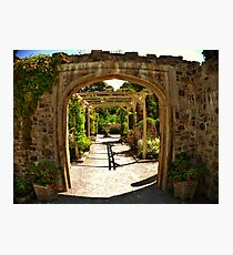 Mount Edgcumbe Formal Gardens Fisheye Photographic Print