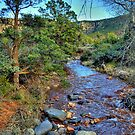 Spring Stream In Sedona by K D Graves Photography