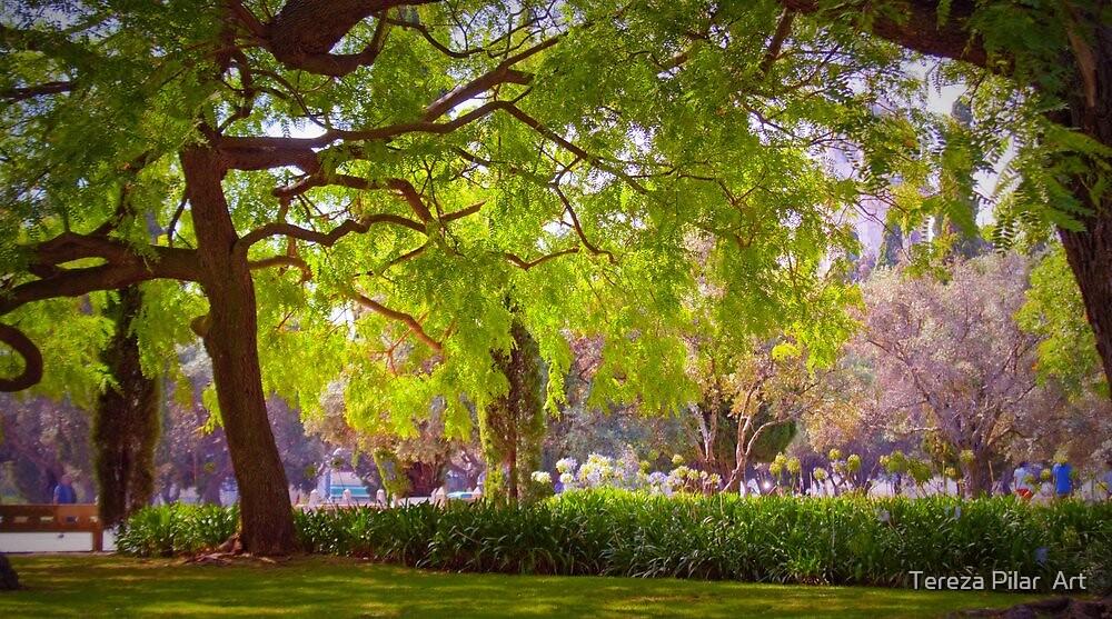 jardim de belém by terezadelpilar ~ art & architecture
