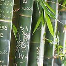 Graffiti Bamboo by Ronald Rockman