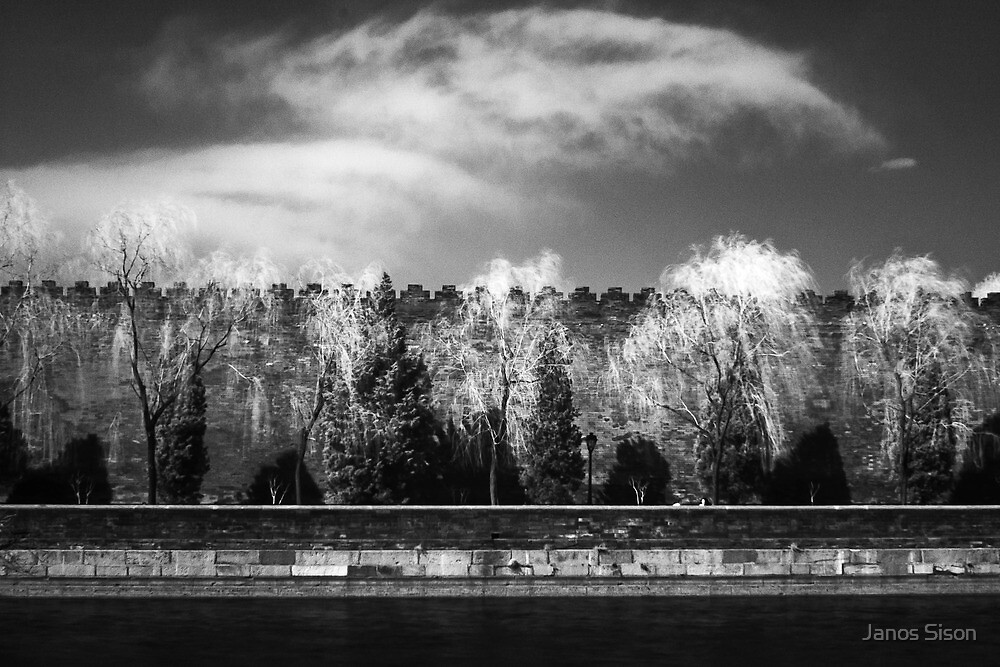 wall and moat by Janos Sison