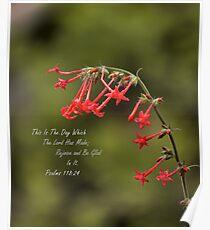 Psalms 118:24 Poster