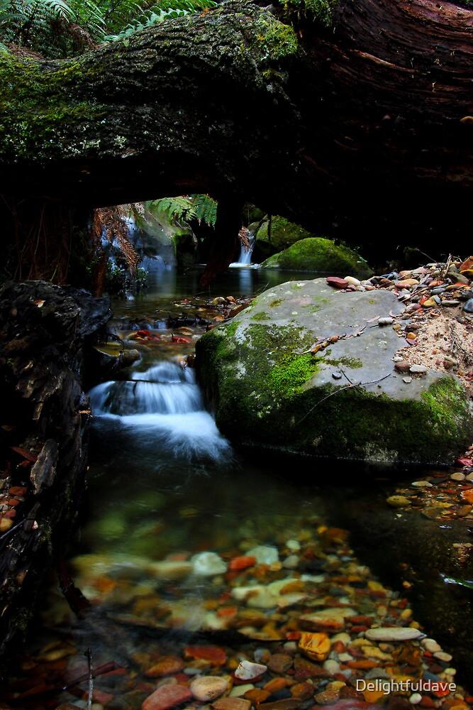 Megalong creek by Delightfuldave