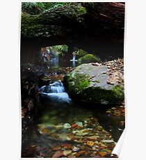 Megalong creek Poster