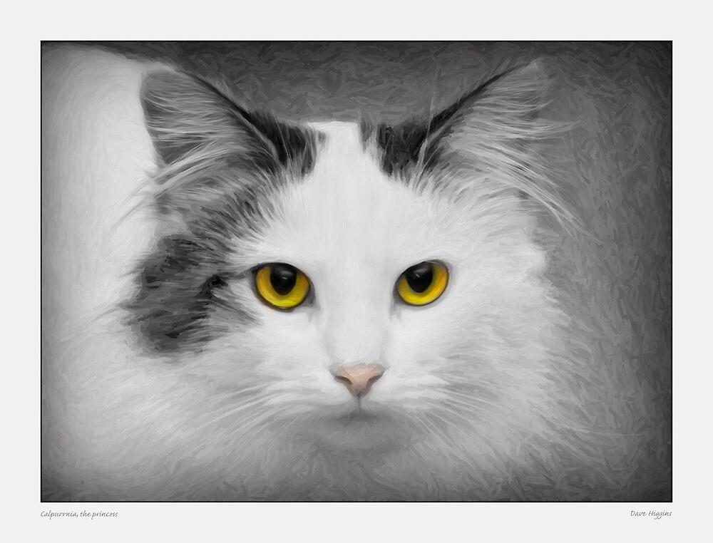 Calpurrnia, the princess by Dave  Higgins