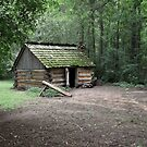 The Cabin at Brattonsville by Widcat
