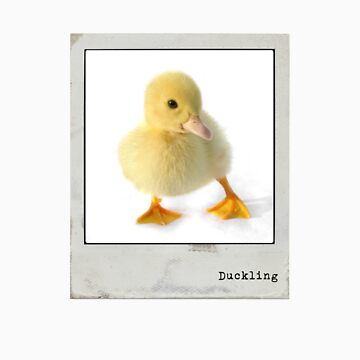 Duckling Polaroid by markpiovesan
