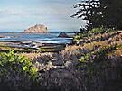 On the Coast by Karen Ilari