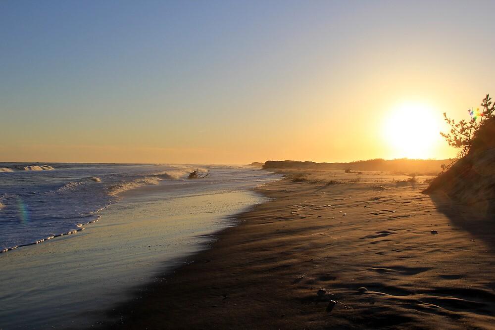 Beach 2013  by Kelley-D