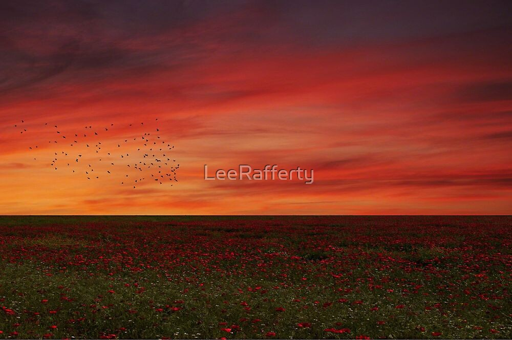Bel tramonto by LeeRafferty
