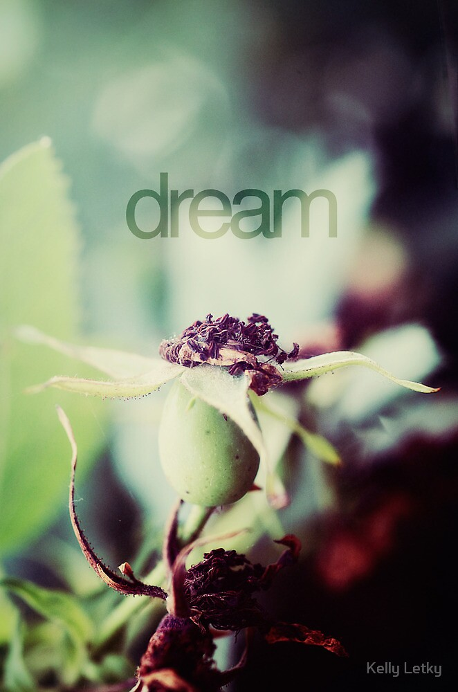 dream by Kelly Letky