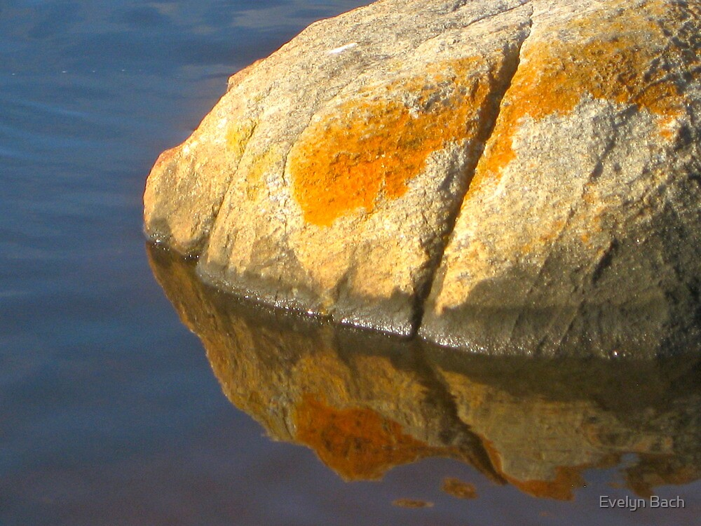 the island of one round rock. by Evelyn Bach