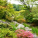 Japanese Garden, Seattle, WA by David Davies