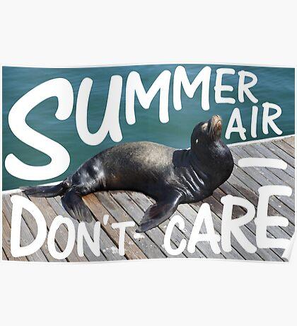Summer Air Poster