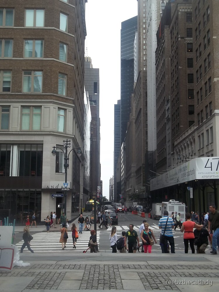 NYC (1) by reebzthecatlady