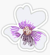 Native Australian Violet Sticker