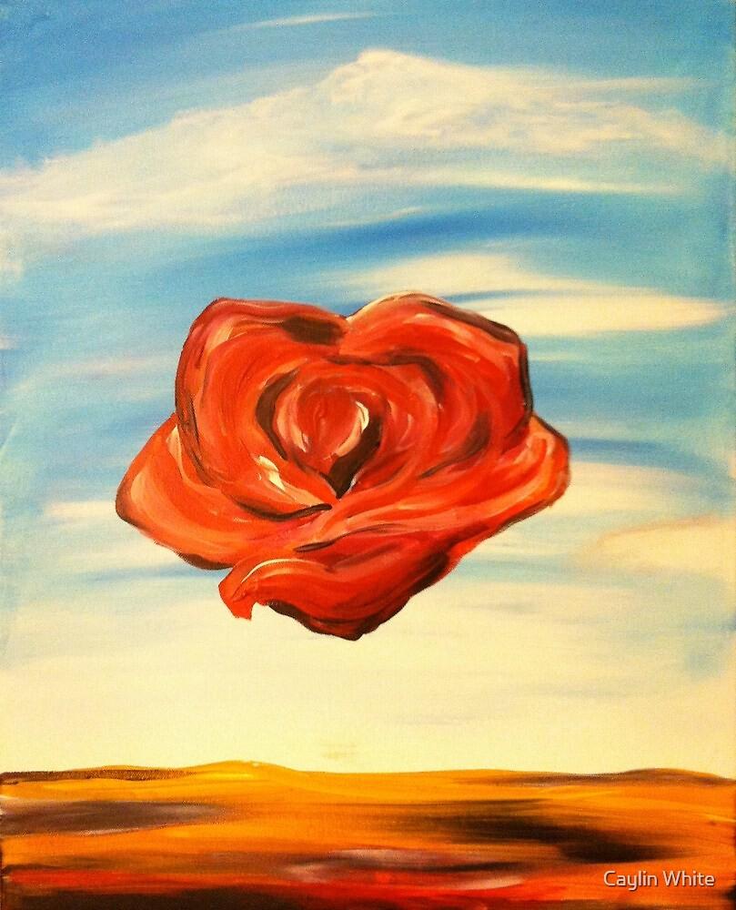 Meditation Rose by cbcink