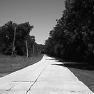 Missouri Route 66, 2012, B&W. by Frank Romeo