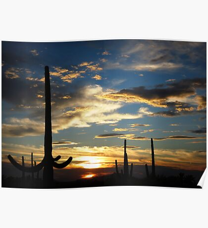 Southern Arizona Sunset Poster