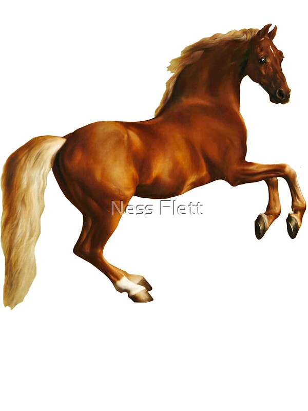 Quot George Stubbs Whistlejacket 1762 Quot By Ness Flett Redbubble