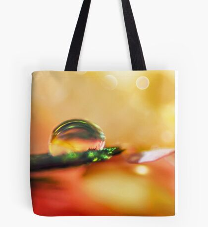 Sanctuary of Light Tote Bag