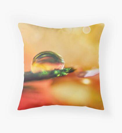 Sanctuary of Light Throw Pillow
