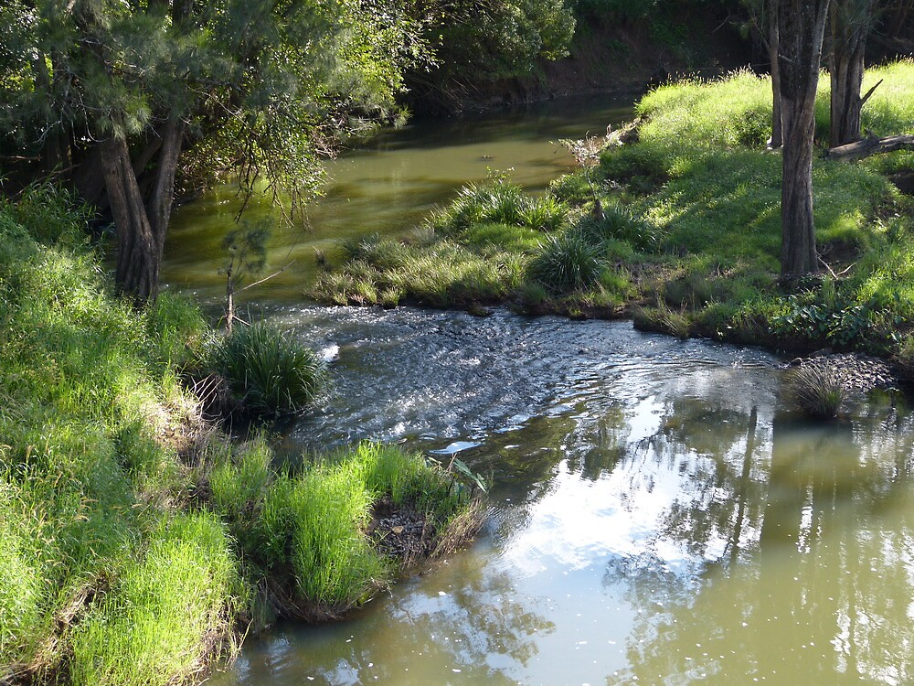 A creek in the country by PhotosByG