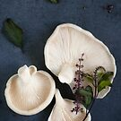 Oyster Mushrooms with Thai Basil Flowers by AnnieD