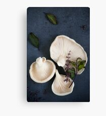 Oyster Mushrooms with Thai Basil Flowers Canvas Print