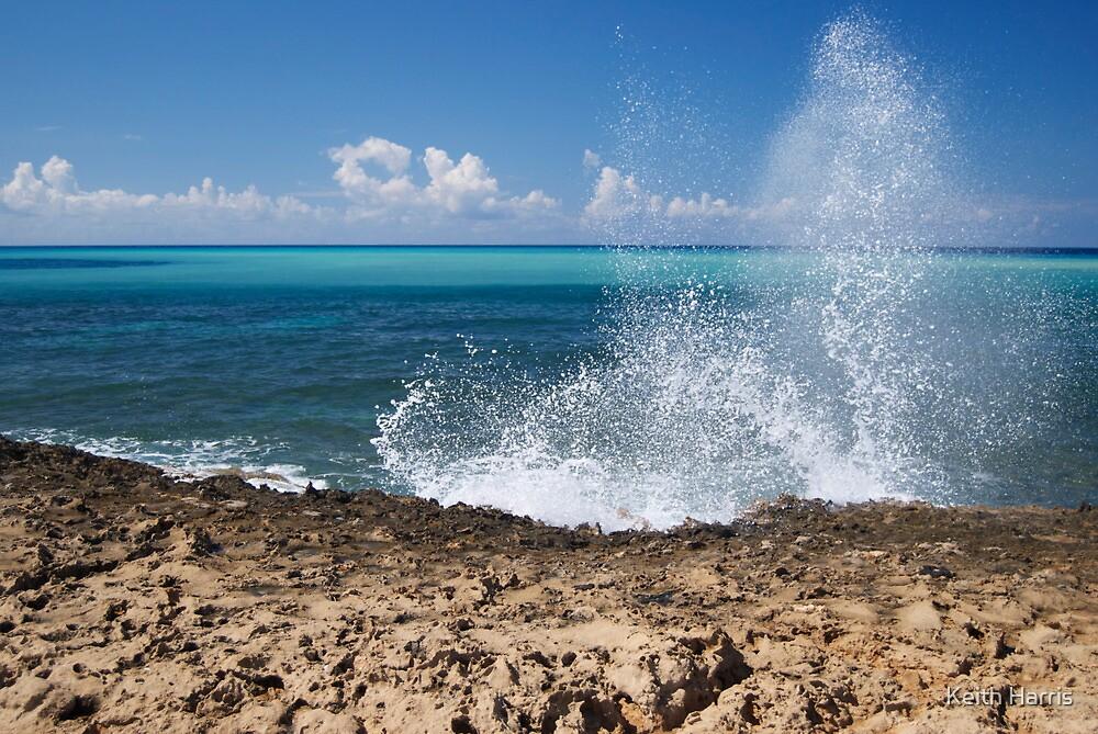 Splash by Keith Harris