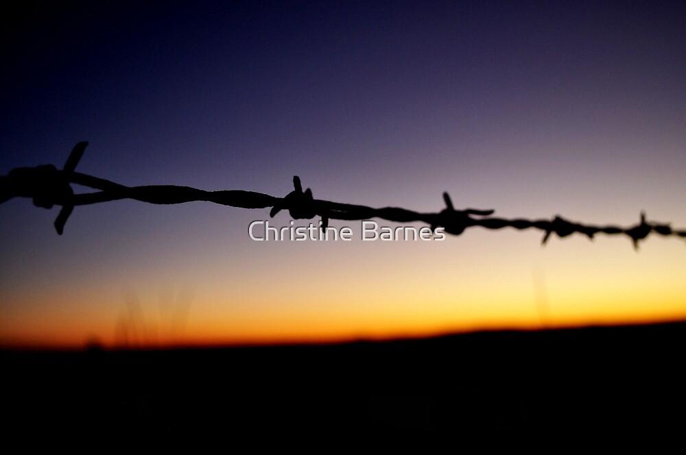 Sharp Goodnight by Christine Barnes