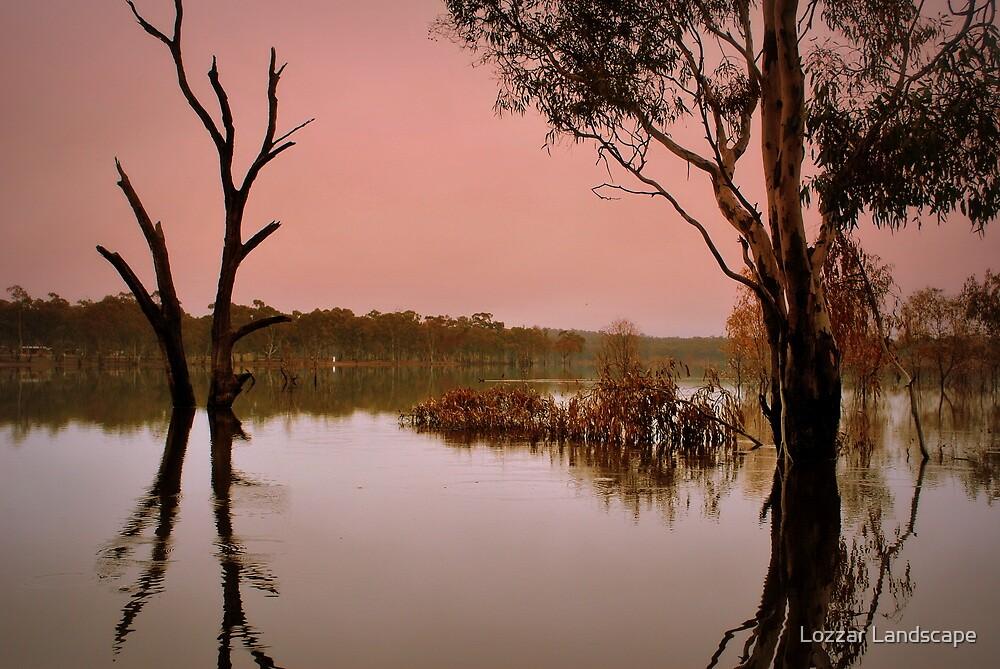 Morning Peace at Eppalock by Lozzar Landscape
