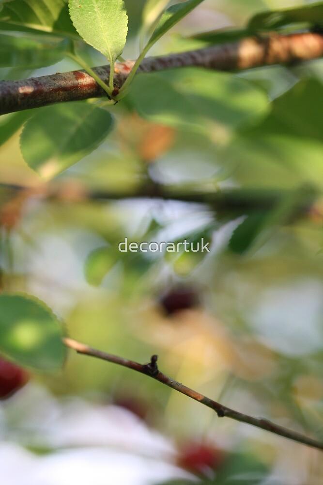 Cherry Tree Magic by decorartuk