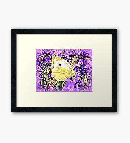Large White on Lavender Framed Print