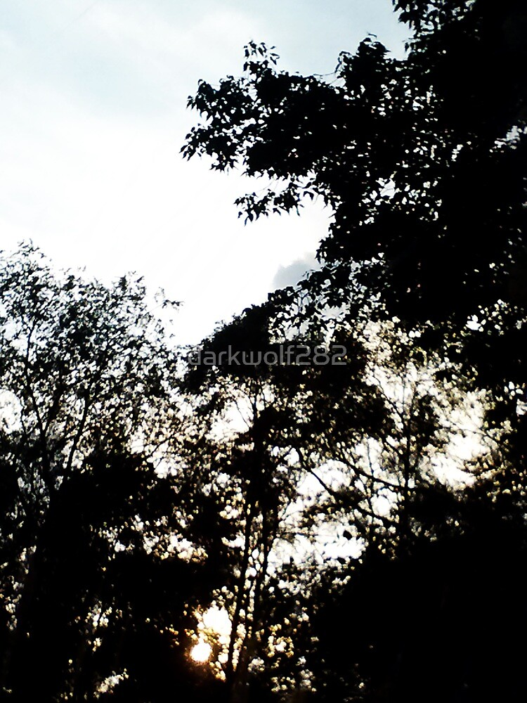 Sunset on saterday by darkwolf282