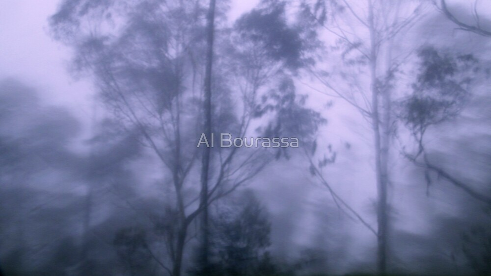 Andes Fog Mist and Rain by Al Bourassa