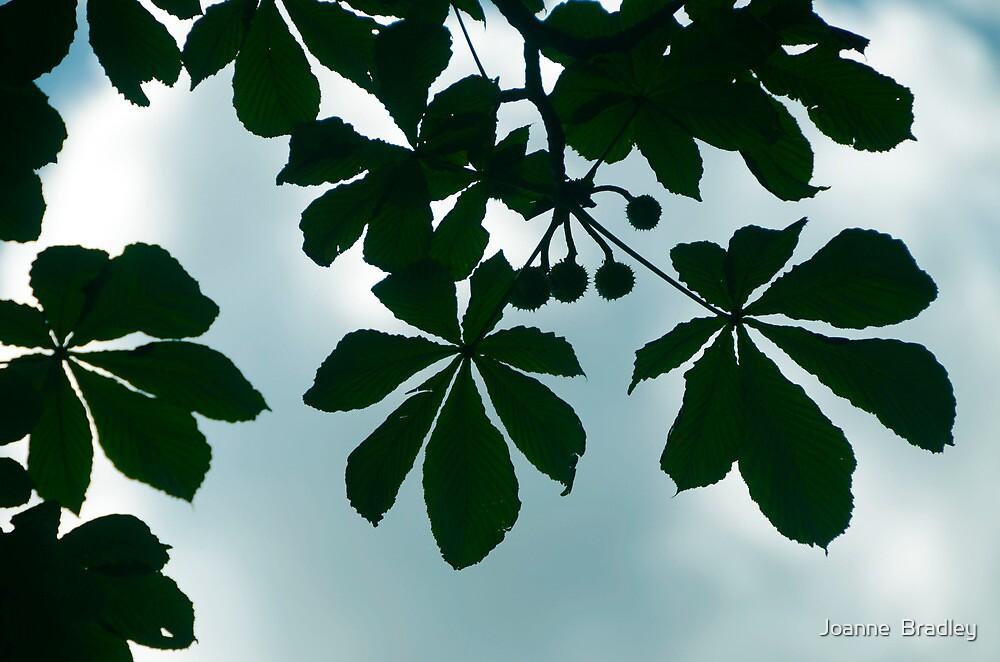 Under The Chestnut Tree by Joanne  Bradley