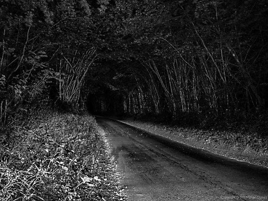 As I wander off into the darkness by Brian Dukes