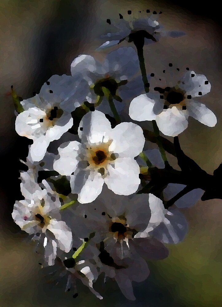 Artistic Blossoms by Karen Harrison
