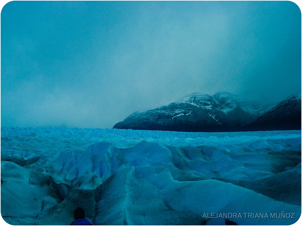 Cold icy south. by ALEJANDRA TRIANA MUÑOZ