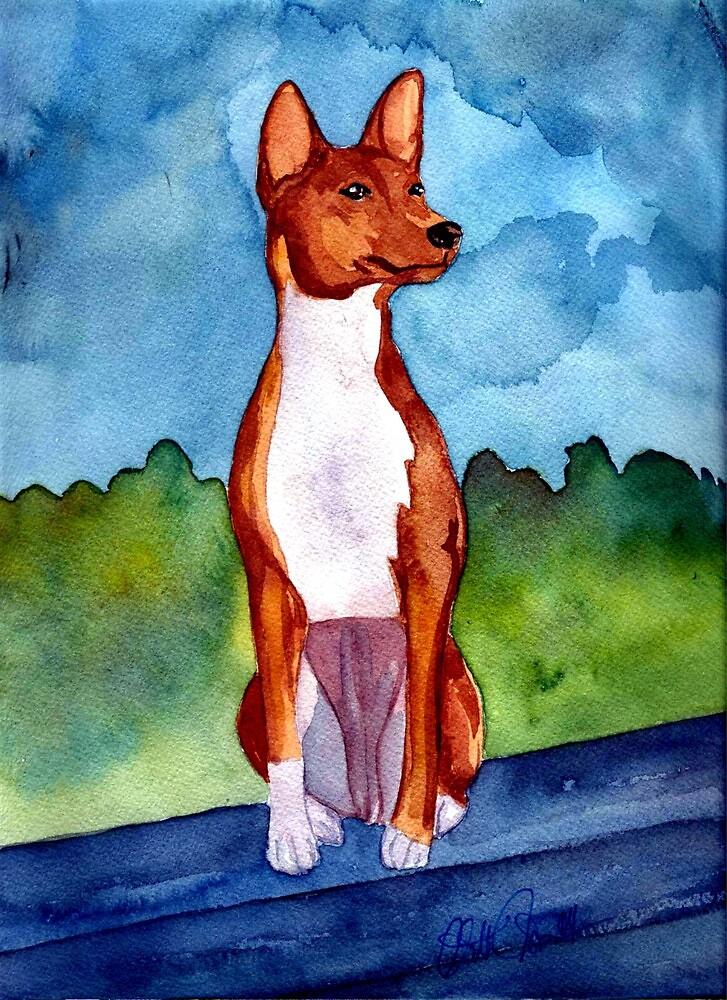 Basenji Dog Portrait by Oldetimemercan
