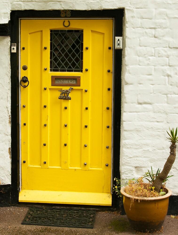 ENGLAND DOOR 1 by gus72