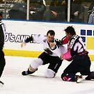 Hockey smash.............. by Brenda Dow