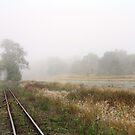 Into the Fog II by NinaJoan