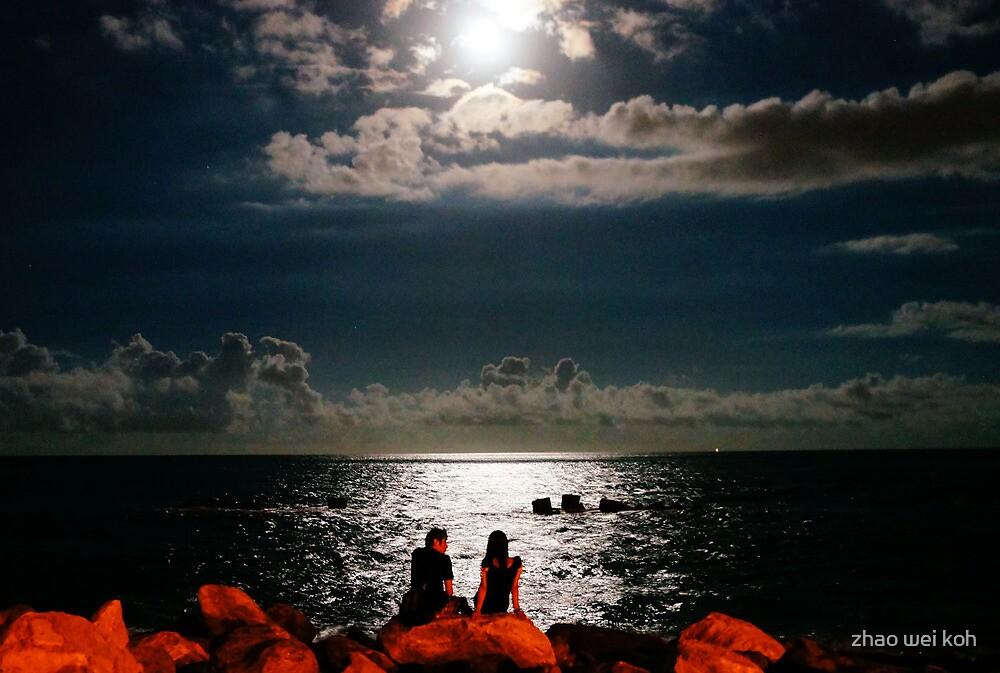 Moonlight lovers by zhao wei koh